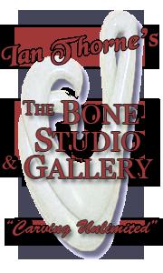 The Bone Studio And Gallery Bone And Whalebone